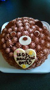 くまさんのチョコレートケーキ